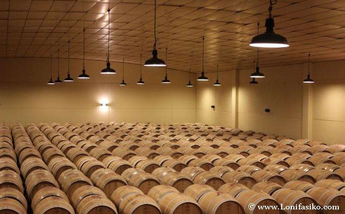 sala de barricas de vino en bodega