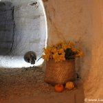Casas Cuevas Bardeneras Valtierra Fotos Bardenas Navarra