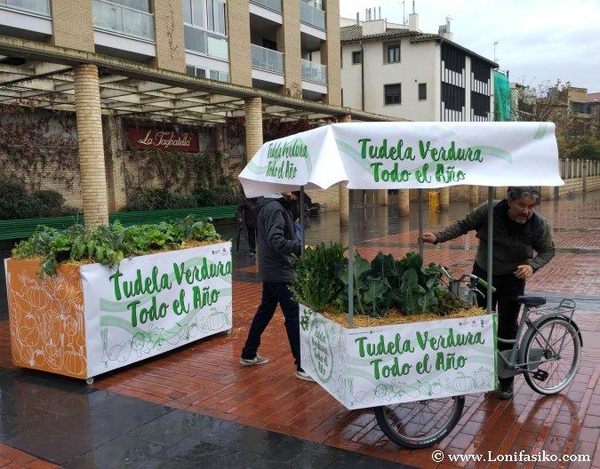 Verducleta fotos Tudela Mascotas Verdes
