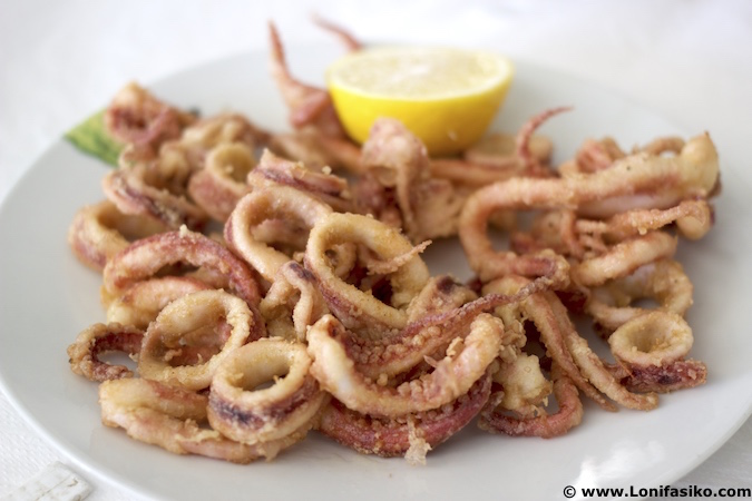 fried calamari photos calamares fotos