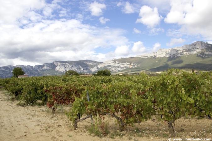 Rioja Alavesa Sierra Cantabria fotos