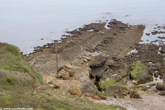 comillas oca algas marinas