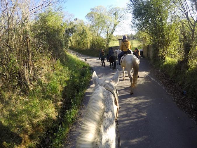 turismo activo Comillas Hípica Troya