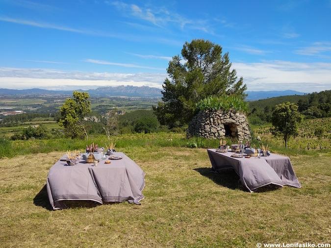 Almuerzo entre viñedos Penedés picnic