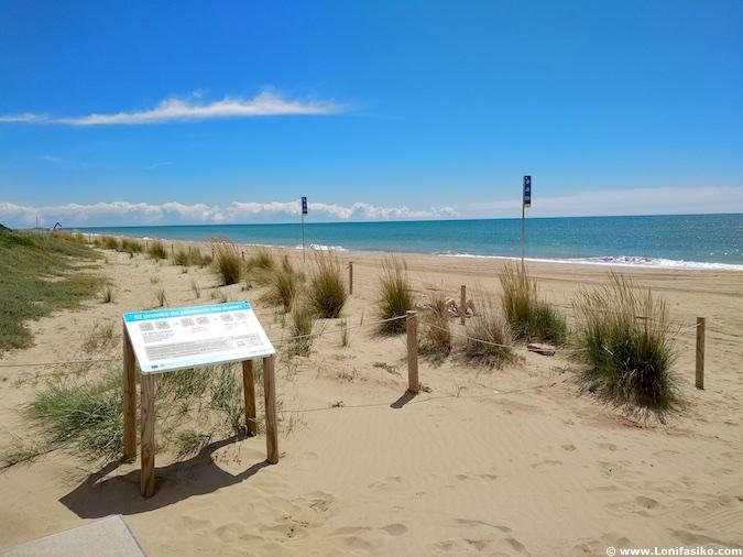 dunas playa gavà