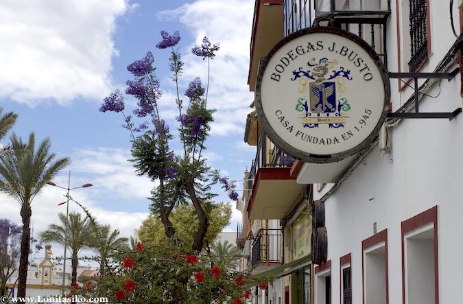 Bodegas Busto en Los Palacios y Villafranca