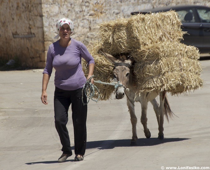 gentes de albania lago prespa