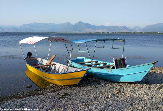 lago Shkodër fotos albania