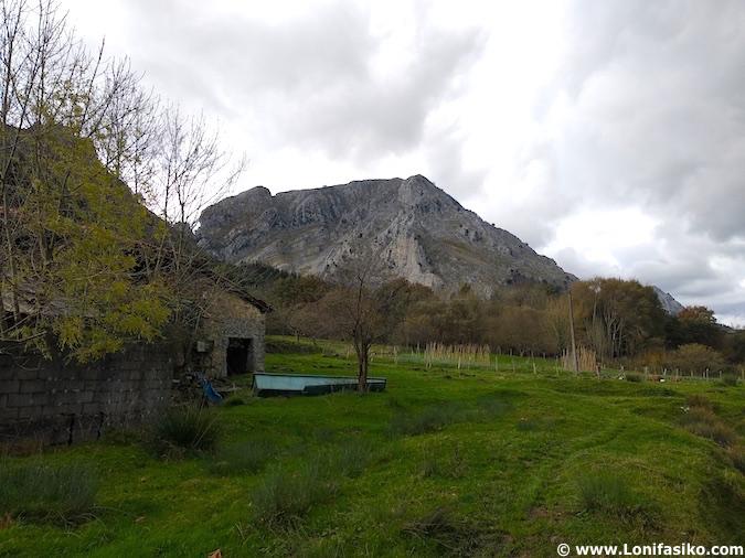 Experiencia pastor por un día en el País Vasco