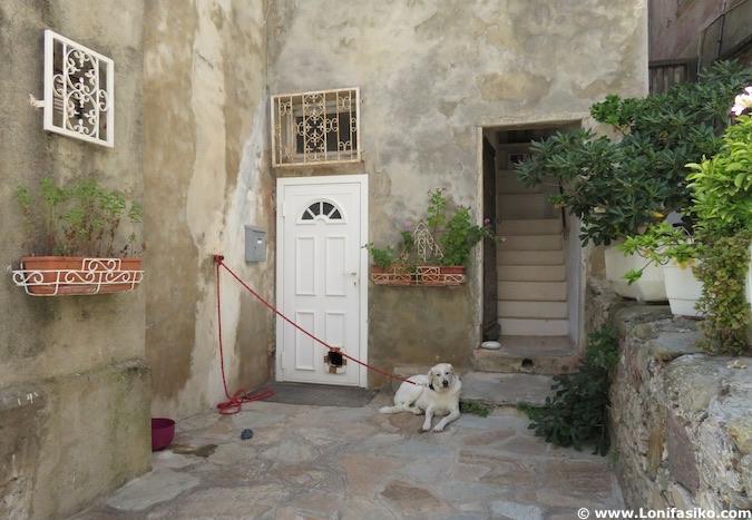 Fotos de Erbalunga en Cap Corse