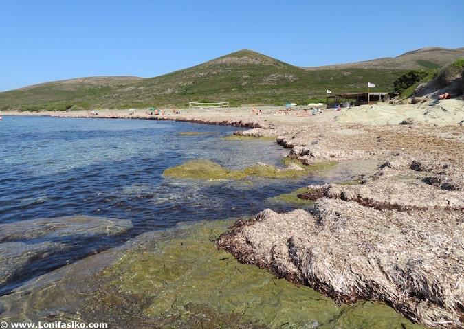 playa barcaggio cap corse Córcega