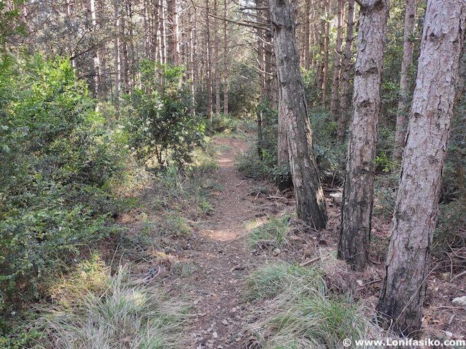 rutas btt en montes obarenes