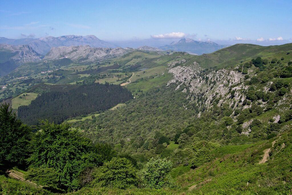 Valle de Karrantza encinar de Sopeña