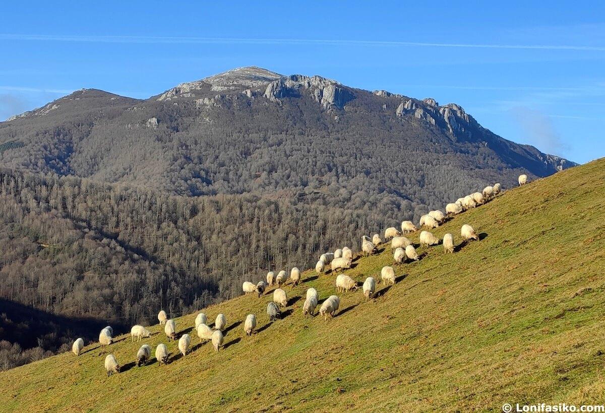 montes del pais vasco aratz