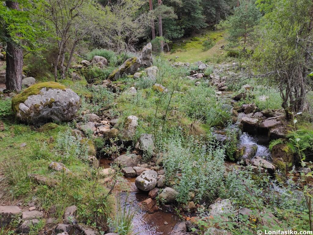 rios sierra de cebollera la rioja