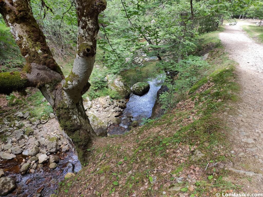 ruta rio puente ra en la rioja