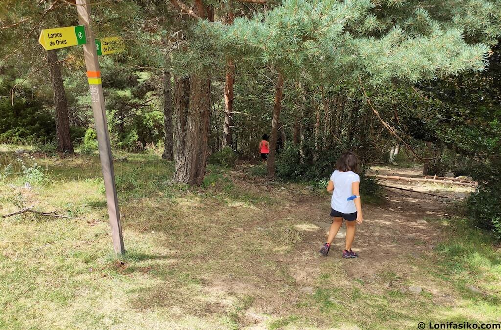 ruta senderismo con niños sierra de cebollera