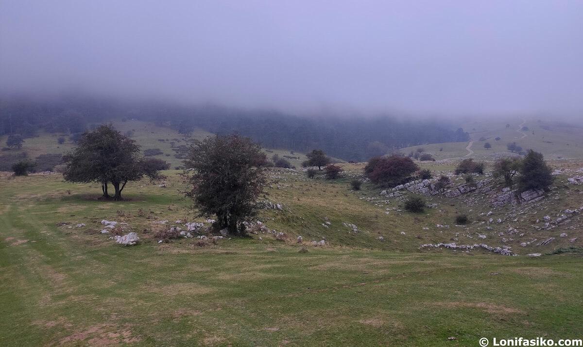 niebla en aralar navarra